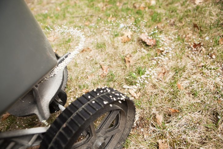 How To Get Your Lawn Ready For The Cooler Weather 2