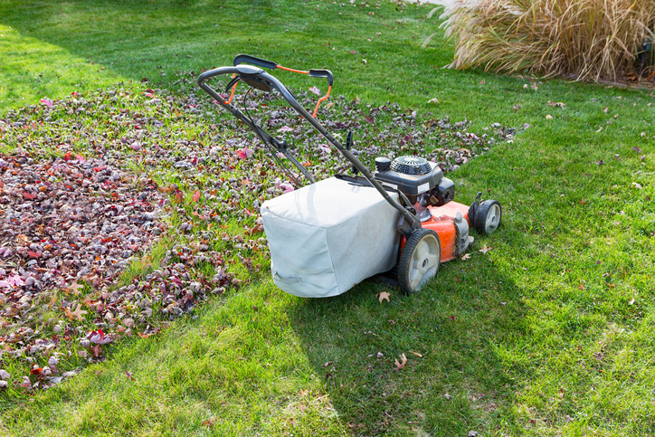 How To Get Your Lawn Ready For The Cooler Weather 1